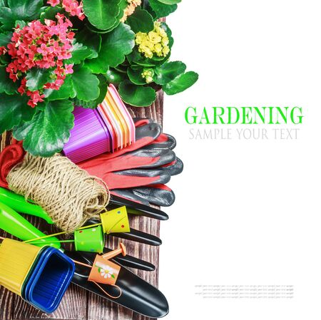 Gardening tools on a white background isolated. text is an example and removed easily photo