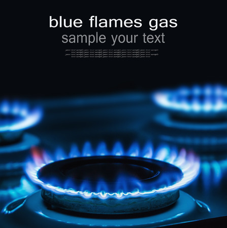 Blue flames of gas burning from a kitchen gas stove with space for text on top. Focus the front edge of the hotplate