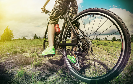 rear wheel: cyclist on a Mountain Bike on a forest track. photographed on a fisheye lens. focus on the rear wheel. Toned image