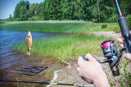 hand line fishing: fish caught on a hook on the background of the lake. Focus on the trough and fish
