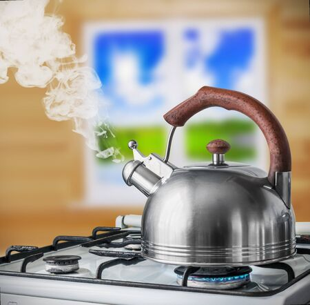 spout: kettle boiling on the gas stove in the kitchen. Focus on a spout