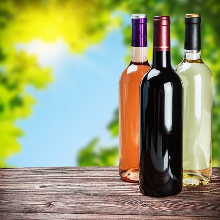 fining: bottles of wine of different sort in a natural setting
