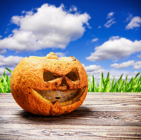 rotten and angry pumpkin lantern jack on a wooden table on a background of nature