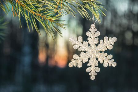 decorations for Christmas and new year. Snowflake hanging on tree in snowy woods. shallow depth of field, soft focus