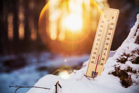 thermometer with sub-zero temperatures in the winter forest Stok Fotoğraf