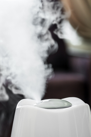 electric humidifier works in the room and produces a steam jet