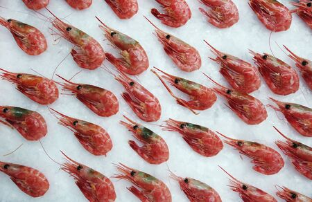 prawns lie on the ice in the store or in the kitchen of a restaurant