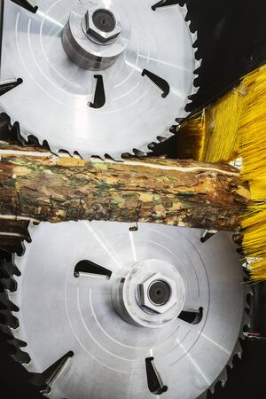 cutting discs and milling cutter of the machine woodworking on a sawmill. Focus on the teeth of the blade
