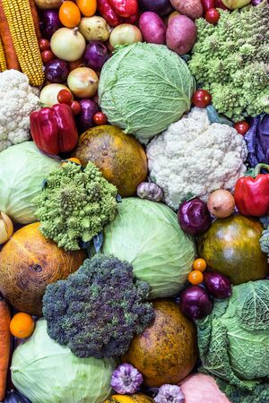 fresh vegetables cabbage, sweet peppers, cucumbers, tomatoes and other vegetables. background of vegetables Reklamní fotografie