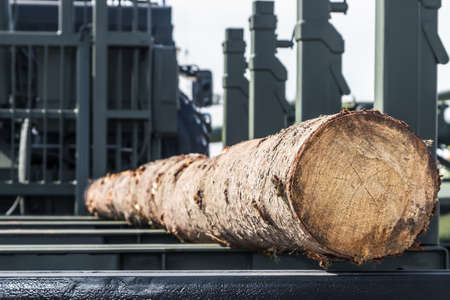 pine log is lying in the back of a car for transporting logs Stock fotó - 155356188