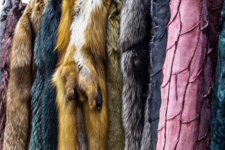 natural fur skins of different shades and colors