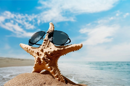 starfish beach: Sunglasses, Starfish, Beach.