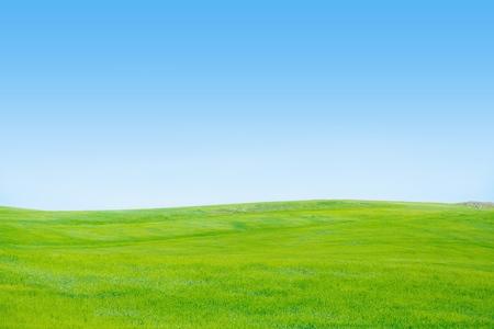 Sky, Grass, Field. Stock Photo