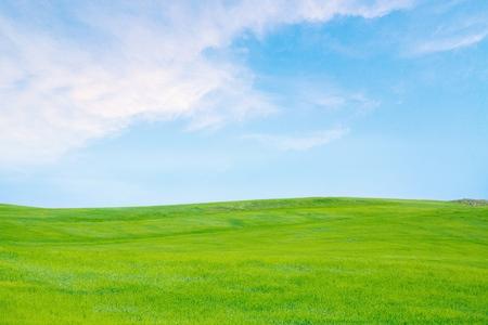 草、空のフィールドです。 写真素材