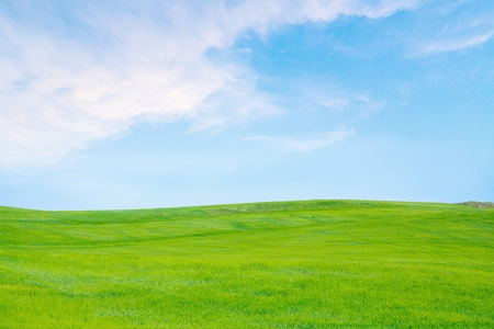 blue sky and fields: Sky, Grass, Field. Stock Photo