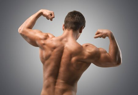 muscular build: Body Building, Muscular Build, Human Muscle.