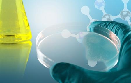 in lab: Estudiar, la qu�mica, la prueba.