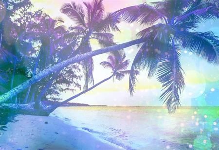 tropical beach panoramic: Beach, scene, sunlight.