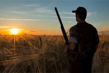 사냥, 헌터, 산탄 총. 스톡 콘텐츠