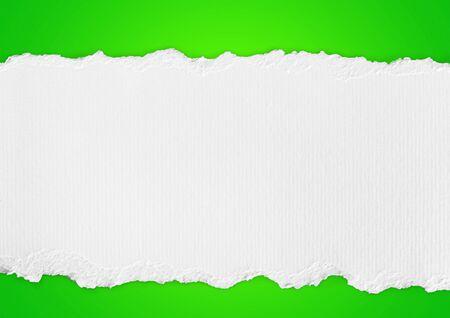 torn edge: Paper, Torn, White. Stock Photo