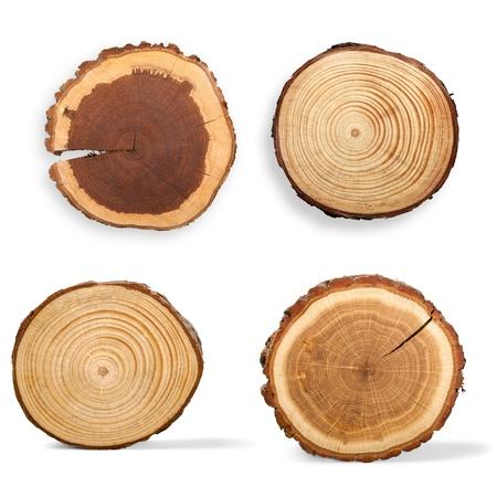 木のリング、ログ、木。 写真素材