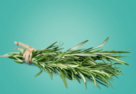 Herb, Isolated, Variation. photo