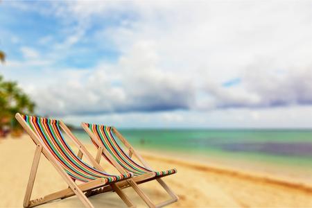 tropical climate: Beach, Tropical Climate, Palm Tree.