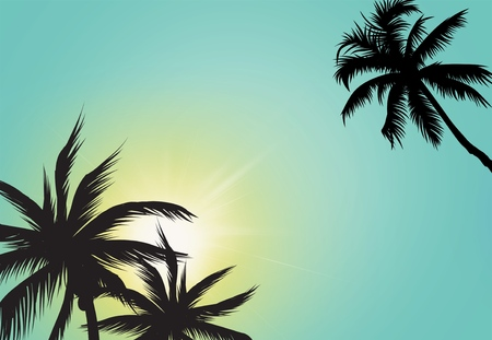 Palm Tree, Tree, Vector.