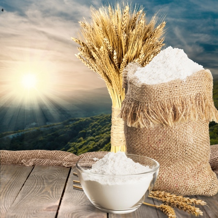 cereal plant: Wheat, Cereal Plant, Isolated. Stock Photo