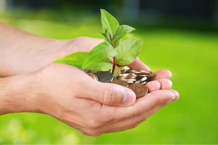 handful: Currency, Tree, Human Hand.
