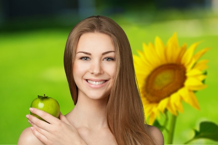 single flower: Sunflower, Sun, Single Flower.