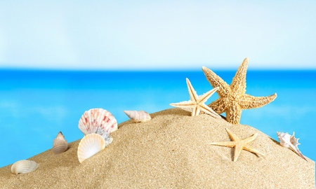 seashore: Cancun, beach, mexico.