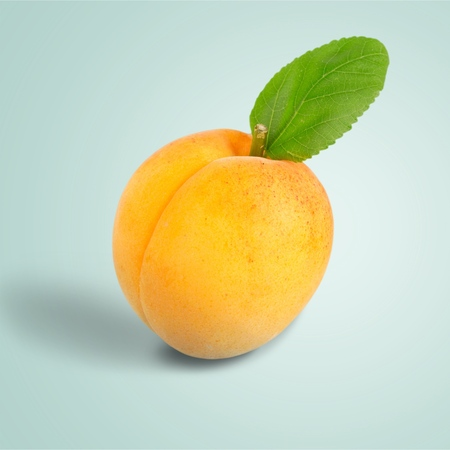 mineral: Apricot, Preserves, Mineral. Stock Photo