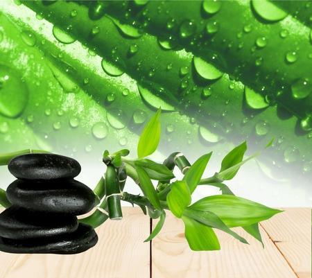 lastone therapy: Spa Treatment, Stone, Zen-like.