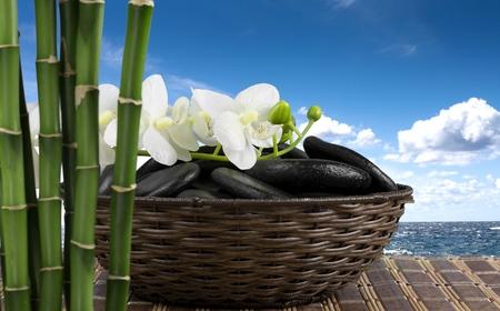 body conscious: Bamboo, Spa Treatment, Health Spa.
