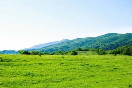 Golf, grün, gras. Standard-Bild - 42141933