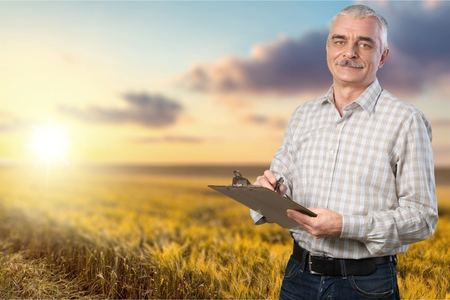agronomist: Business, field, wealth. Stock Photo