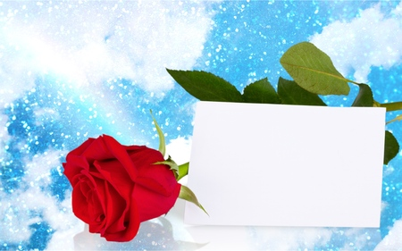 thankyou: Thank You, Valentines Day, Greeting Card. Stock Photo