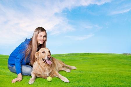 endear: Dog, pet, white. Stock Photo
