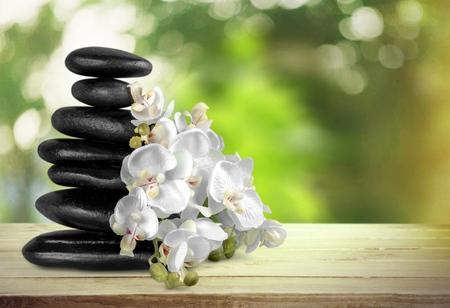 lastone: Spa Treatment, Orchid, Stone. Stock Photo