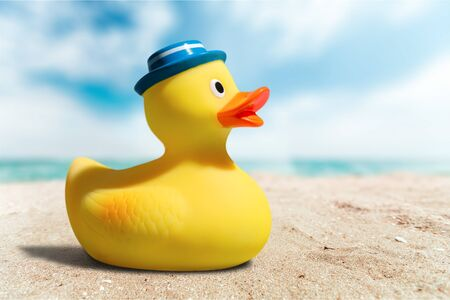 rubber duck: Rubber Duck, Toy, Rubber.