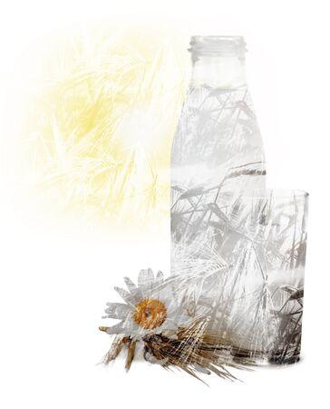 pasteurized: Milk, Glass, Milk Bottle. Stock Photo