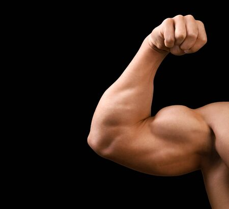 body building: Body Building, Bicep, Weight Training.