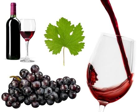 single object: Grape Leaf, Leaf, Single Object. Stock Photo