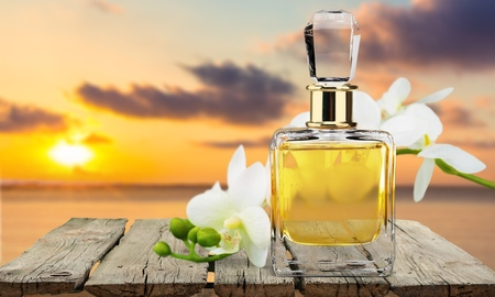 traquility: Perfume, Aromatherapy, Orchid. Stock Photo