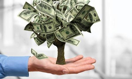 crecimiento planta: �rbol del dinero, moneda, Crecimiento.