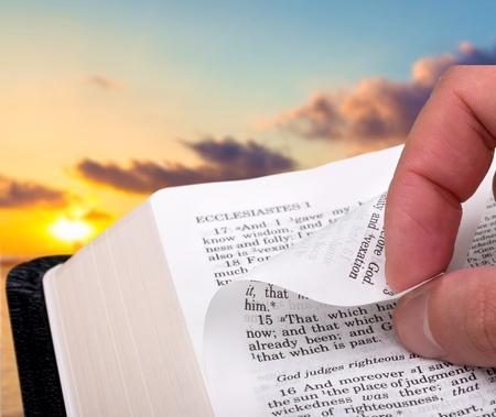 testaments: Bible, Study, Page.