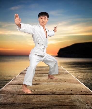 sensei: Karate, Martial Arts, Judo.