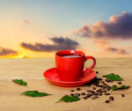 breakfast garden: Cup, garden, breakfast. Stock Photo