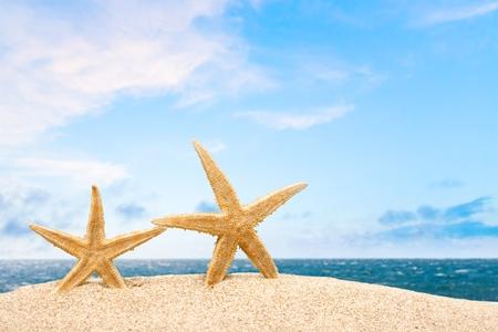 playa: Holiday, summer, playa.